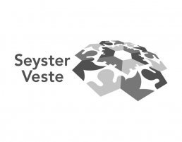 beeldmerk-seyster-veste-visuele-identiteit-2008-894x696
